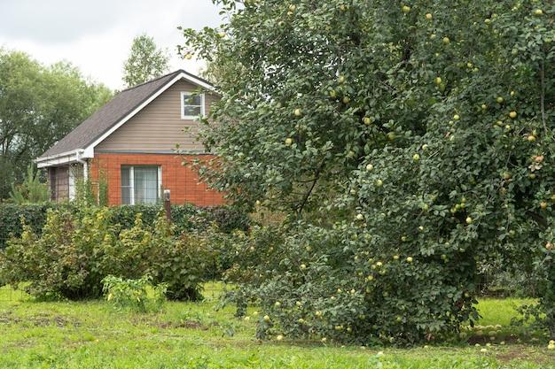 마을의 집 배경에 과일이 있는 사과 나무
