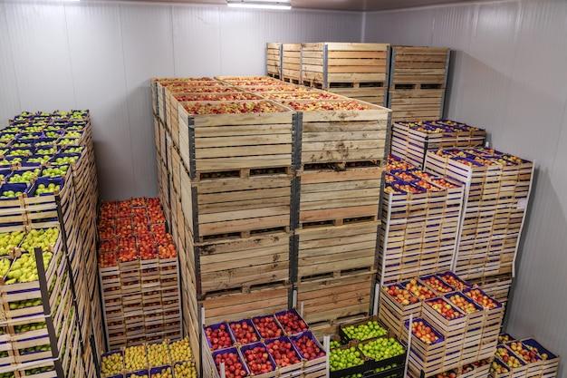 出荷の準備ができている木枠のリンゴとナシ。冷蔵インテリア。