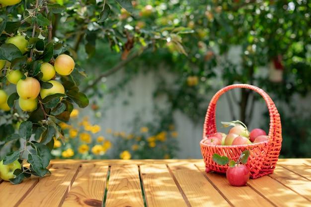 木の枝と木製のテーブルの[バスケットにリンゴ