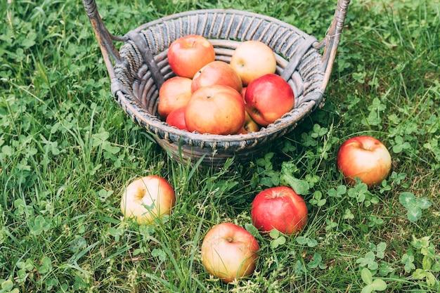 バスケットの近くに横たわるリンゴ