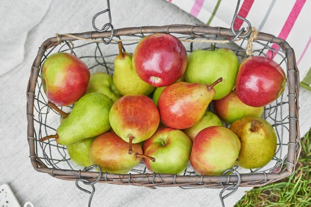 Apples and pears in a basket on green grass in summer