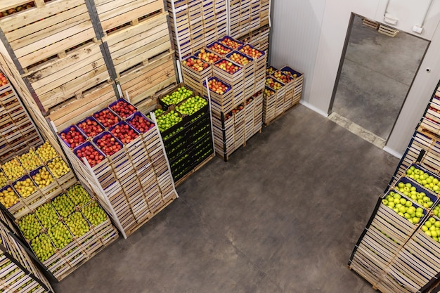 Apples and pears in crates ready for shipping