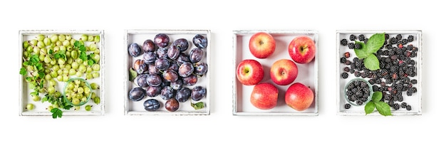 Яблоки, сливы, крыжовник и ежевика на деревянном собрании подноса изолированном на белой предпосылке. концепция здорового питания с летними фруктами и ягодами. вид сверху, плоская планировка. баннер элементов дизайна