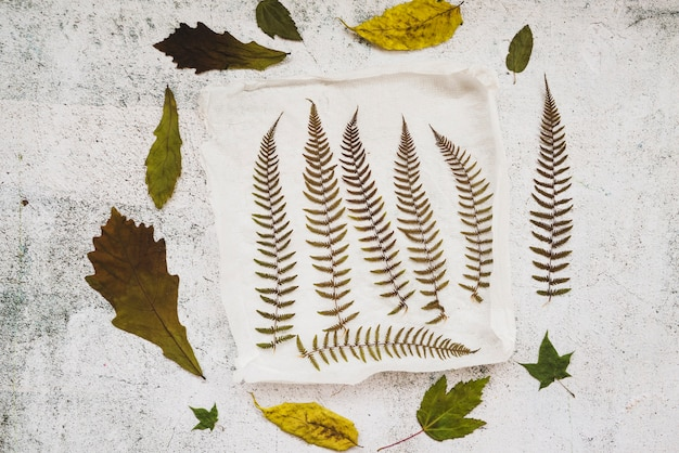 Application with dried leaves