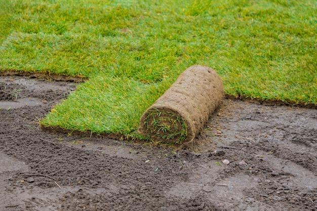 Укладка скатанной зеленой травы с укладкой дерна для нового газона укладка газона в рулонах