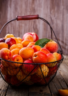 Apricots, fruits summer