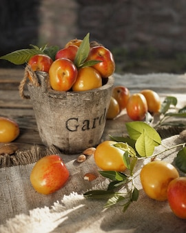 Apricots or nectarines in an old wooden bucket