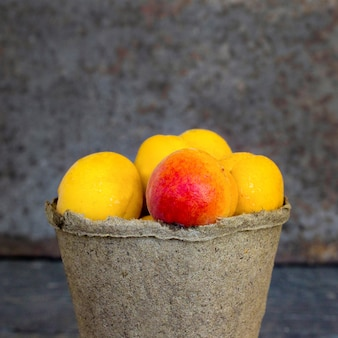 Apricots in a pot