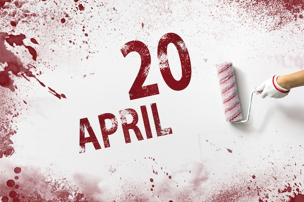 April 20th. day 20 of month, calendar date. the hand holds a roller with red paint and writes a calendar date on a white background. spring month, day of the year concept.