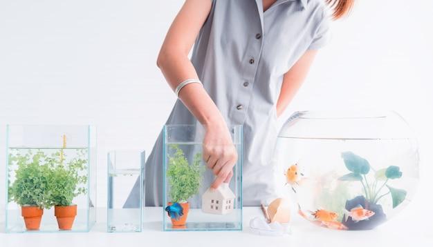 Aquarium for pet and hobby at home. decorate and fish tank design.