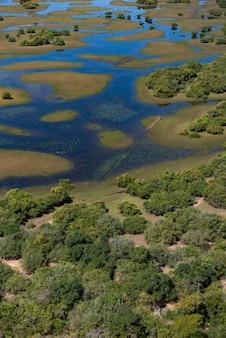 Аквидауана, мату-гросу-ду-сул, бразилия: вид с воздуха бразильских водно-болотных угодий, известный как пантанал - вертикальное изображение