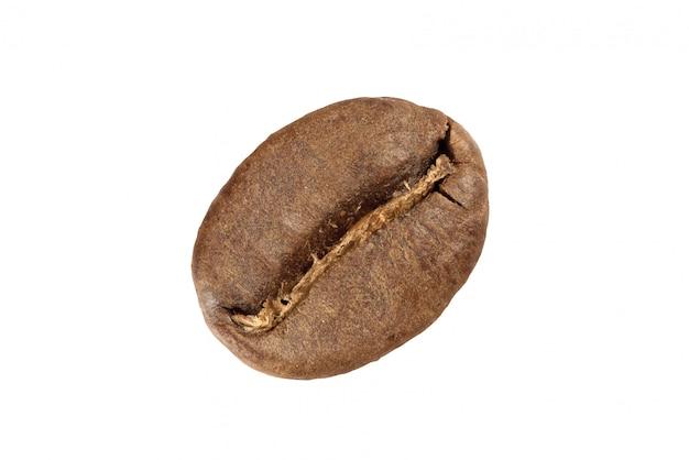 アラビカコーヒー豆
