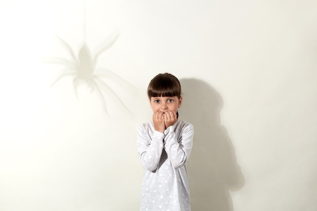 Arachnophobia. scared little girl with dark hair and shadow of spider on wall, small kid looking directly with big frightened eyes and biting her fingernails, dresses casually.