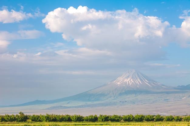 Арарат гора и поле