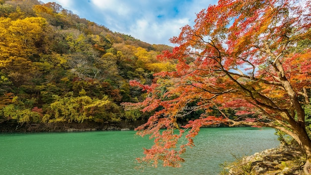 Arashiyama in autumn season along the river in kyoto, japan.