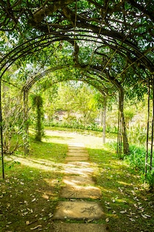Arch green soft natural pathway