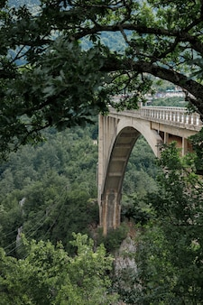 木々の間の山の側面図のアーチ型の橋