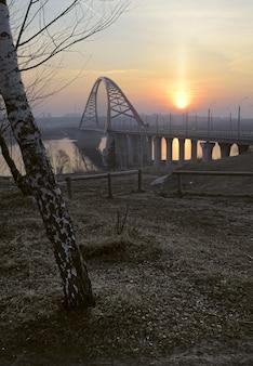 夜明けに白樺のアーチ型の橋