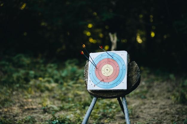 Стрельба из лука по мишеням, стоящим на траве поля