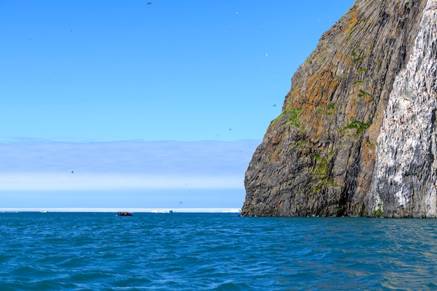 Арктический пейзаж в летнее время. архипелаг земля франца юзефа. мыс флора, остров гукера. рубини рок.