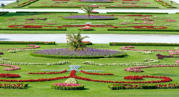 Area before schonbrunn palace with blossoming flowers on lawn