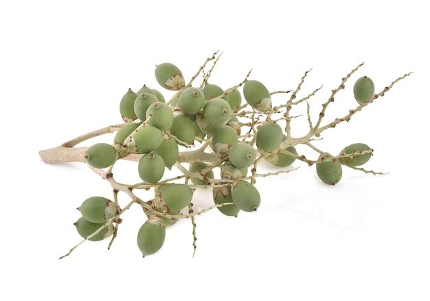 ビンロウジュまたはキンマのヤシの果実は白で分離します
