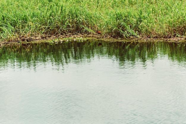 Вулкан ареналь и озеро в коста-рике.