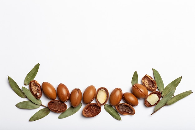 Argan seeds isolated on a white background argan oil nuts with plant cosmetics and natural oils back...