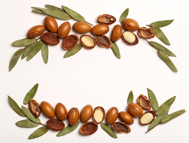 Argan seeds isolated on a white frame background argan oil nuts with plant cosmetics and natural oil...