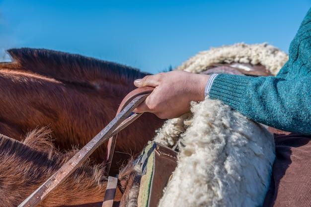 手綱を握って、馬に乗ってアルゼンチンのガウチョ