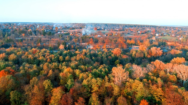 Arial drone photography of autumn treetops. top down view.
