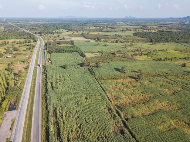 Arial вид полей сахарного тростника, растущих возле шоссе во второй половине дня с тенью облаков и природы .. концепция сельского хозяйства
