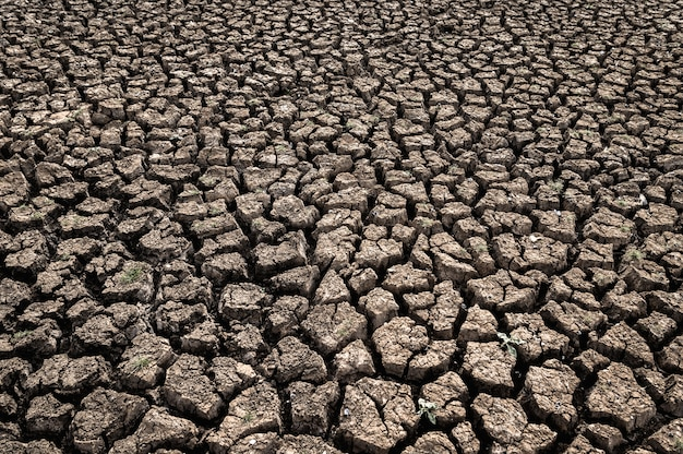 Arid land with dry and cracked ground, global warming