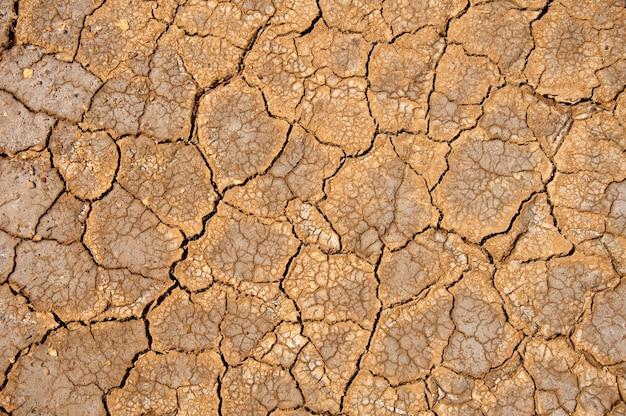灼熱の太陽の下で乾燥した土壌。世界の干ばつ。