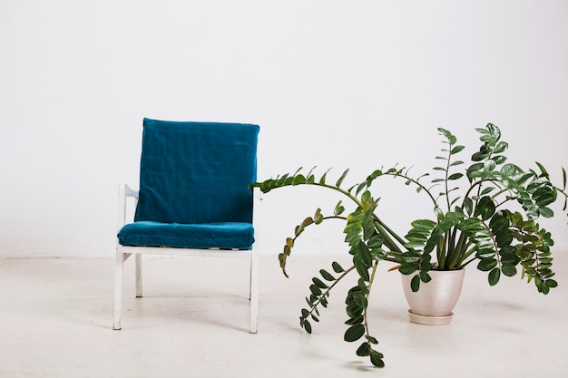 Armchair with green plant in pot