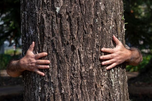 体や顔を見せずに後ろから木を抱きしめる男の腕