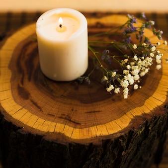 Candele di aroma con fiori sul ceppo di albero