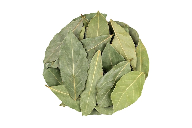Aromatic bay leaves in round shape on white surface