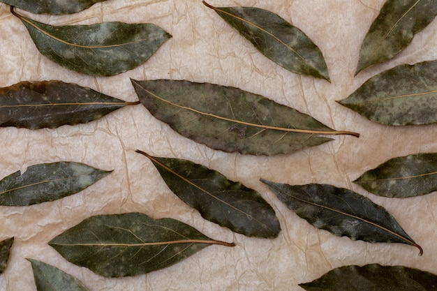 Aromatic bay leaves.
