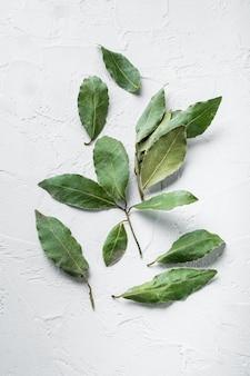 흰색 돌 배경에 아로마 유기농 베이 잎 세트