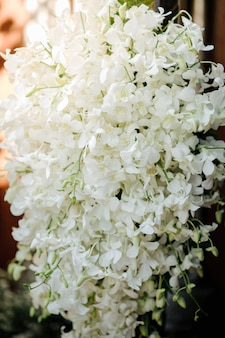 Arrange flowers with white orchids.