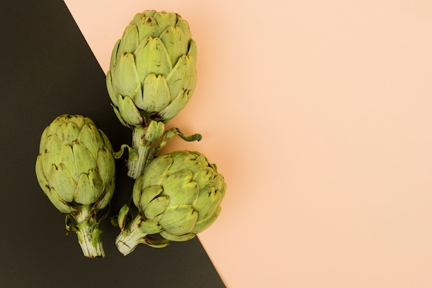 Arranged artichoke on colorful backdrop