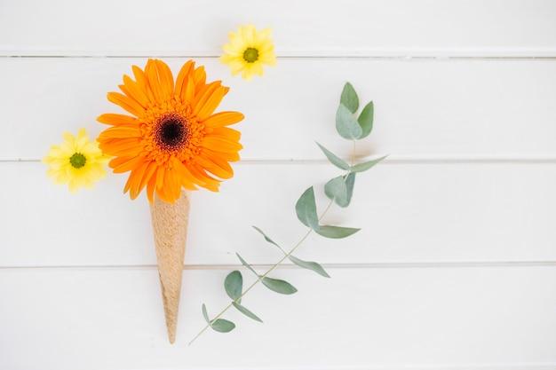Arranged flower in waffle cone