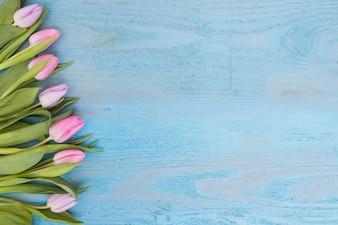 Arranged soft tulips on wood