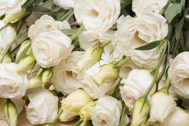 Disposizione di bellissimi fiori sullo sfondo