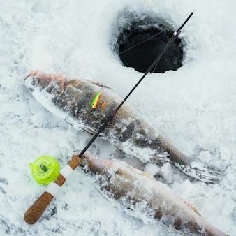 Disposizione degli elementi di pesca all'aperto