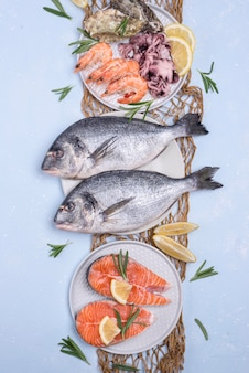Arrangement of fresh uncooked seafood fish