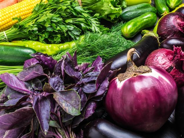 Arrangement  fresh vegetables - corn, green salad, cilantro, eggplant, cucumber, basil