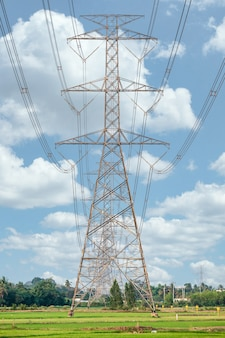 Arrangement of high voltage pole, transmission tower on rice field with blue sky in countryside