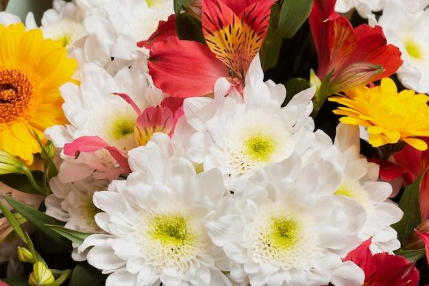 美しい花の背景の配置